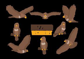 Buzzard Cartoons Vector