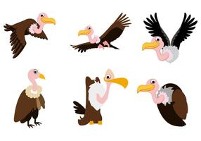 Free Buzzard Vector