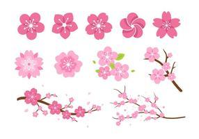 Pink Flower Blossom Vectors