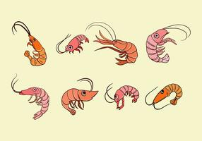 Cartoon Prawns Vector