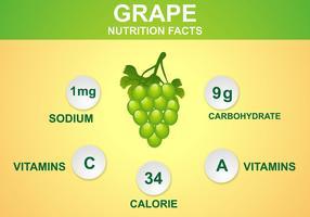 Grape Nutrition Facts Vector