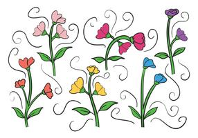 Sweet pea vector set