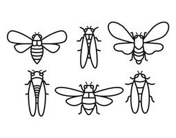Cicada vector set