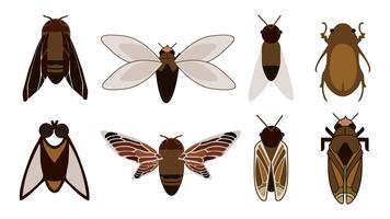 Vecteur gratuit d'icônes insectes