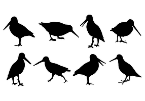 Silhouette Snipe Free Vector