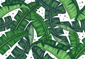 Botanical Banana Leaves Seamless Pattern vector