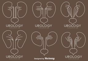 Vector Set Kidney With Bladder Icons In Line Style