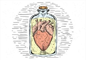 Free Hand Drawn Vector Heart In a Jar