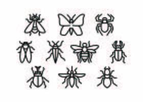 Vector de icono de línea libre de insectos