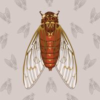 Cicada Hand Drawn Illustration With Pattern Background