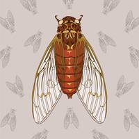 Cicada Hand Drawn Illustration Med Mönster Bakgrund