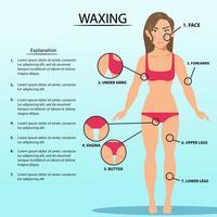 Description Of Women Waxing vector