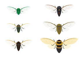 cicadas familjevektor