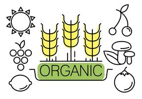 Linjära vektorelement om organiskt liv