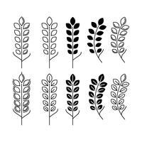 Vectores modernos de orejas de trigo