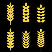 Ícones do vetor das orelhas de trigo