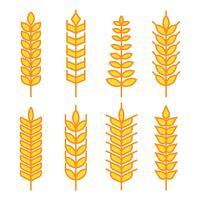 Weizen-Ohren-Vektor-Icons