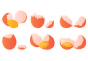 Conjunto De Vetor De Ovo Quebrado