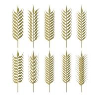 Simple Wheat Ears Clipart