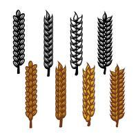 Vetor de ícone de orelhas de trigo