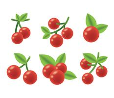 Cranberries Vector Icons