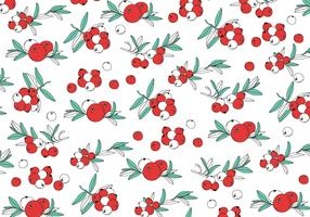 Cranberries Pattern Vector