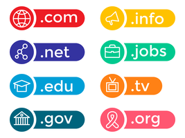 Colorful Domain Icon Vector