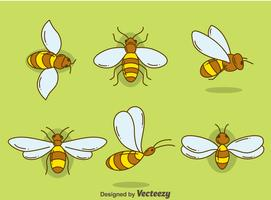 Handdragen Hornets Collection Vector