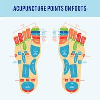 Acupuntura Foot Scheme Vector