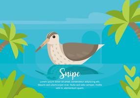 Snipe Illustration vector