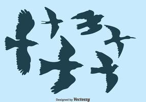 vector de silueta de pájaro volador