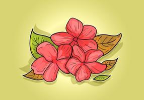 Hand gezeichnete Pflaumenblüte