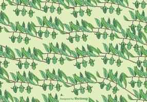 Jojoba Plant Seamless Pattern - Vector