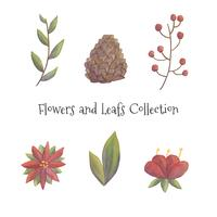 Cute Christmas Flowers And Leafs Collection vector