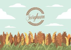 sorghum fält illustration vektor