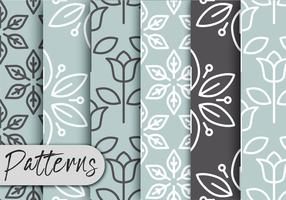 Gray Decor Pattern Set