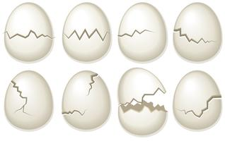 Vector Set Of Broken Egg Shells
