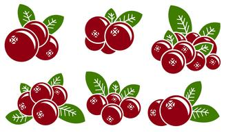 vector cranberry pictogramserie