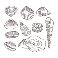 Detaljerad Doodles Of Shells