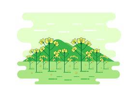 Cartoon Canola Landscape Vector