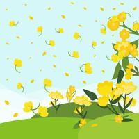 Fleur de canola gratuit avec vecteur de terrain Bakcground