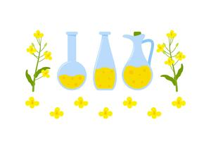 Free Outstanding Set of Canola Vectors