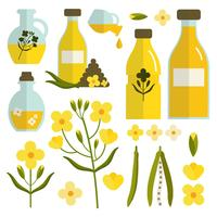 canola set vector