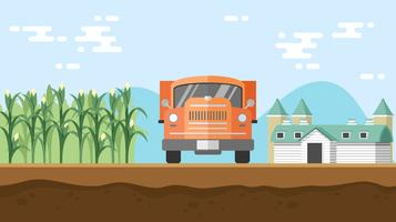 Comprobando el campo de maíz montando un vector libre de camiones