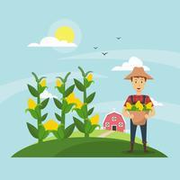 Corn Stalks Field and Farmer Illustration