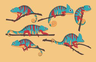 Vecteur de caméléon