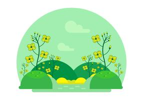 Cartoon Canola Flower Vector