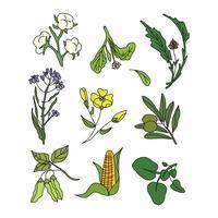 Vettori di Doodle di piante