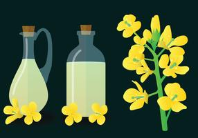 Canola Vector Pack