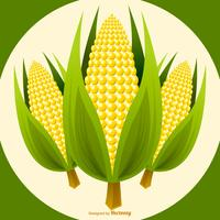 Vector Corn Stalk Illustration